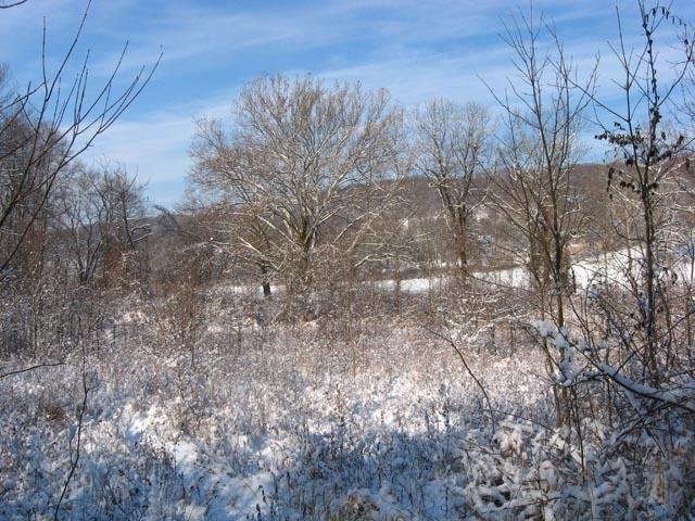Wintermonitoring09