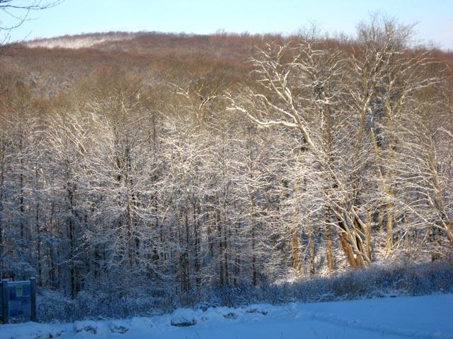 Winter2-09