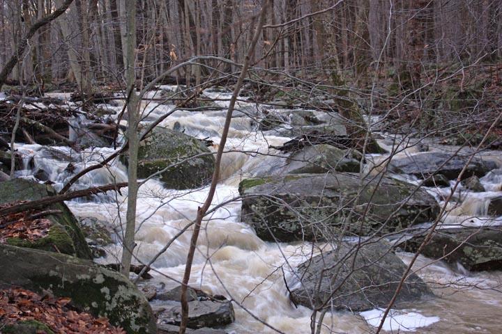 Falls-flood