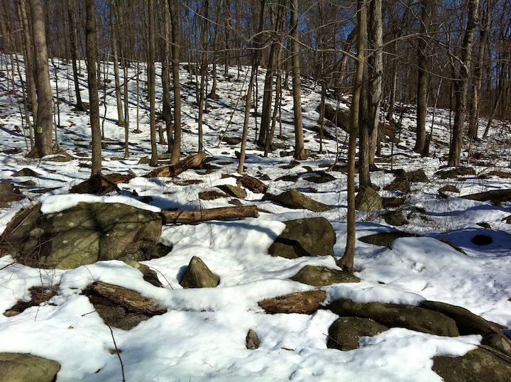 Boulders in snow