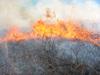 Gwynedd_burn_during