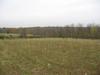 Gwynedd_tree_planting