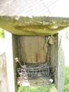 Nest_box_510_ix