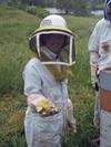 Beekeeping_3
