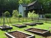 Garden507