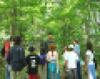 Lectureinwoods9pix