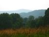 Meadow07