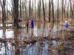 Creekinflood