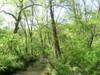 Hildacy_farm_crum_creek